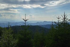 Korona Gór Polski: Radziejowa 1262 m