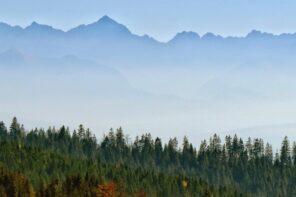 Korona Gór Polski: Turbacz 1310 m