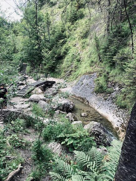 Korona Gór Polski, Wysoka w Pieninach fot. Sarah Balikowski