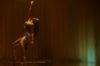 Taniec na rurze: 9 najlepszych klipów
